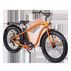 Location vélo - Fat Bike ass. électrique - LocaCycleDirect.com